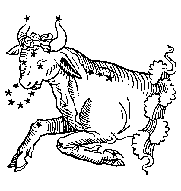 Taurus - Bull. Illustration from a 1482 edition of Poeticon Astronomicon, attributed to Hyginus.