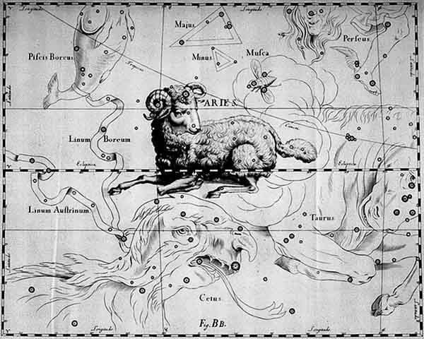 Aries, by Hevelius.