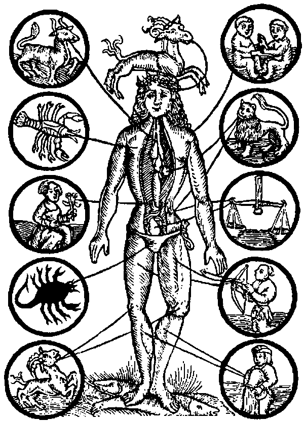 Zodiac Man. Illustration from 1512.