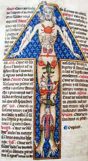 Zodiac Man. Illustration from late 14th century England.